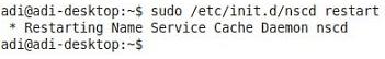 linux nscd restart