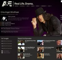 aetv.com screenshot