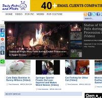 dailypicksandflicks.com screenshot