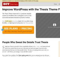 diythemes.com screenshot