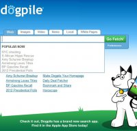 dogpile.com screenshot