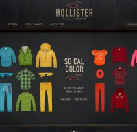 hollisterco.com screenshot