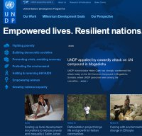 undp.org screenshot