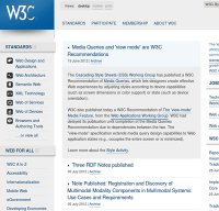 w3.org screenshot